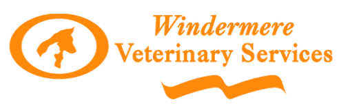 Veterinarians in Windermere | Windermere Veterinary Services